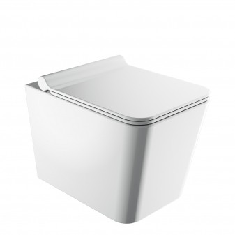 rimless wall-mounted toilet with soft-close seat, 53 x 36 cm