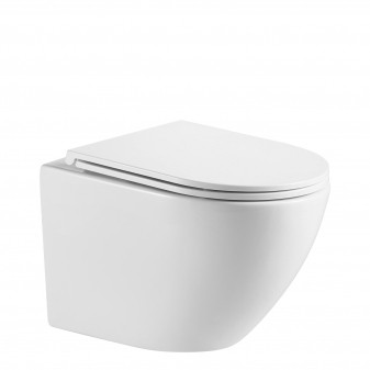 rimless wall-mounted toilet with soft-close seat, 49 x 37 cm